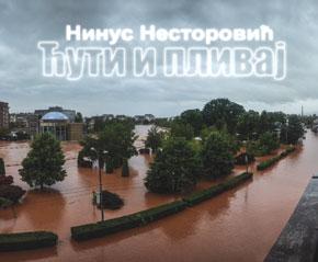 Нинус Несторовић - Ћути и пливај